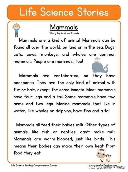 婴儿英语,英语原版阅读:Mammals