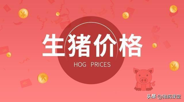 2021年3月23日生猪价格行情分析