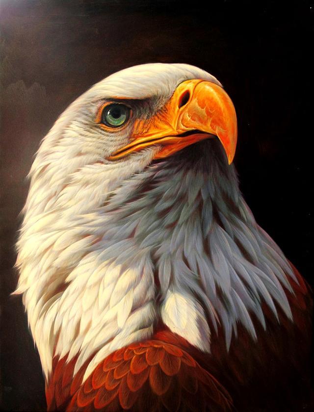 """象征的意义,吉祥物""""苍鹰""""的精神意义及鹰挂件的智慧象征"""