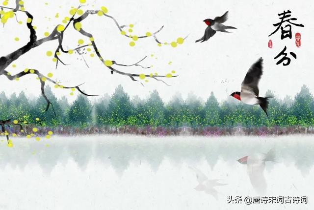 春分的诗,春分节气,赏析苏轼的《癸丑春分后雪》