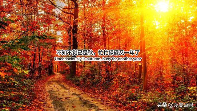 深秋的句子,迎接秋天的温柔句子:落霞与孤鹜齐飞,秋水共长天一色