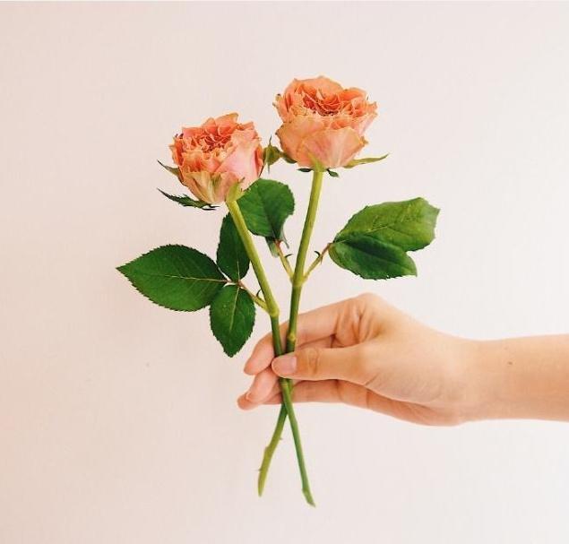 暖心的短句,对情人说的暖心话短句,深情走心,甜到心窝里!