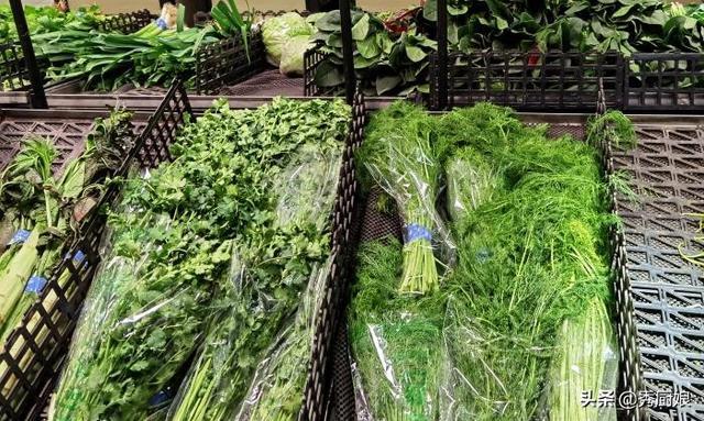 茴香的吃法,天冷了,我家最常吃茴香,比萝卜营养,比白菜鲜,女性常吃好处多