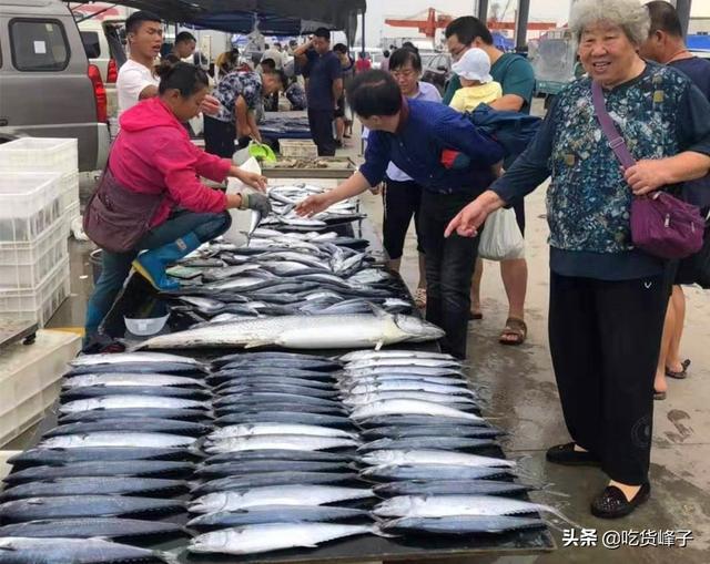 鱼品种,去市场买鱼专挑这5种,连卖鱼的都夸你是个行家,海边人都经常吃