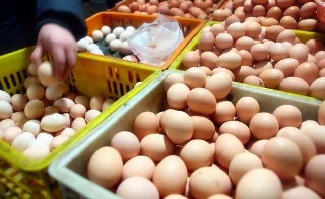 蛋的特征,买鸡蛋时怎么挑?不看颜色,学会挑选技巧,轻松买到好鸡蛋