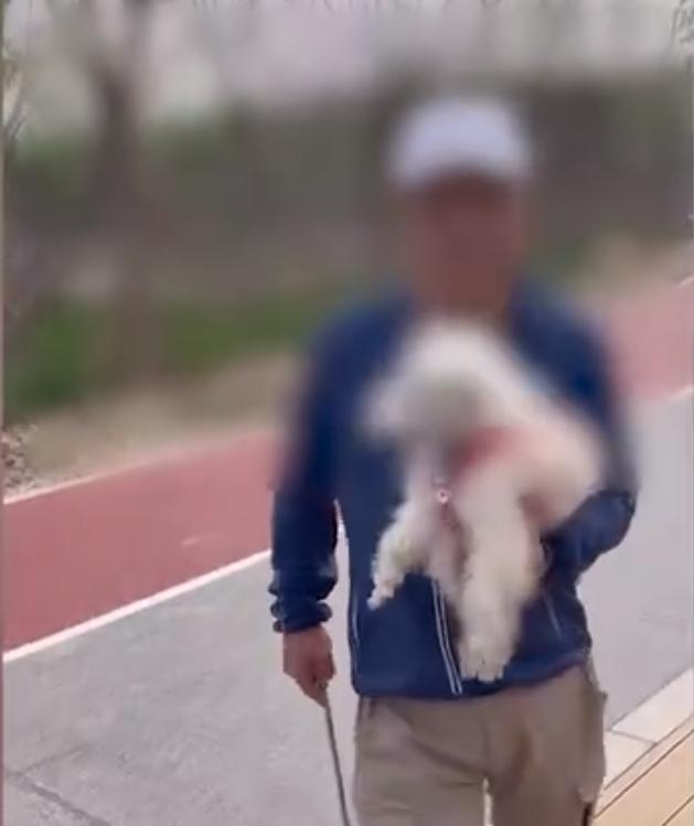 北京2老人遛狗不牵绳,狗便也不清理,市民劝阻反被怼:又没拉你家 全球新闻风头榜 第4张