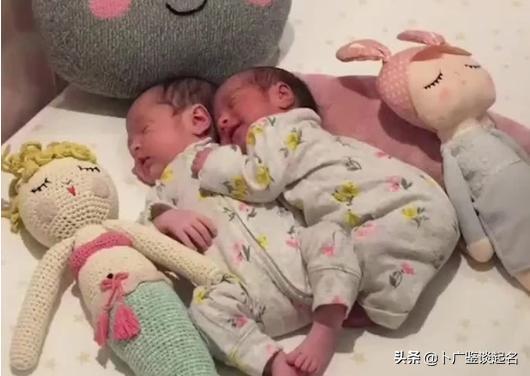 属猪起名,2021年出生的宝宝起名,个个福瑞祥和