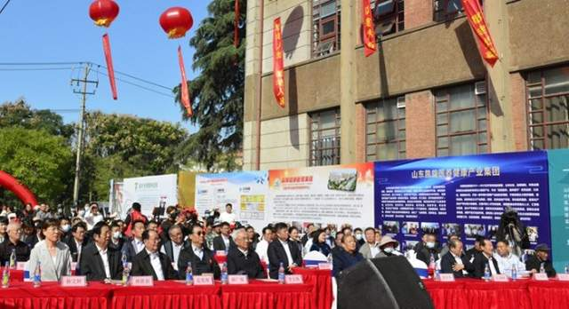 临沂市首届关爱老年人文化节成功举办