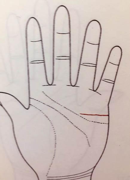 手掌解析运势图婚姻(手掌纹路运势解析)-第2张图片-天下生肖网
