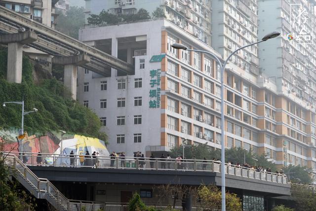 重庆旅行攻略:喝茶看熊猫,欣赏艺术还能吃蹄花汤,这完美的一天