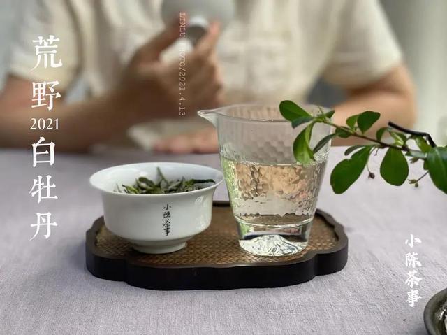 3个冲泡白茶的误区,不仅浪费白茶,泡出来还很难喝