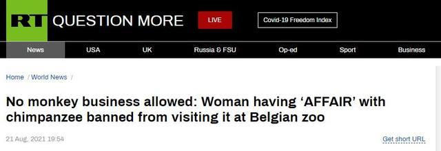 离奇!比利时女子自称与动物园黑猩猩相爱并一再拜望,动物园下禁令