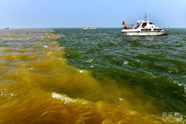 第1视点丨这片湿地,是黄河生态变迁的缩影