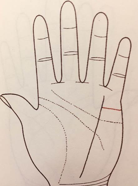 手掌解析运势图婚姻(手掌纹路运势解析)-第4张图片-天下生肖网