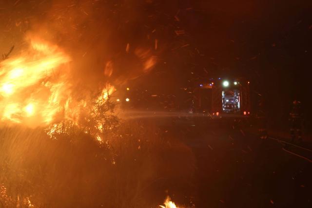"""2021年众灾?希腊野火严虐好像""""世界末日"""",增州野火损坏小镇"""