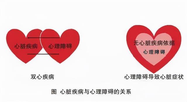 《疏調學術論壇》疏調氣機與雙心疾病的治療