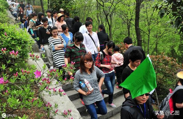 3000人围不好望一株野花,为它还办了一个不好望赏节,这是啥奇花?
