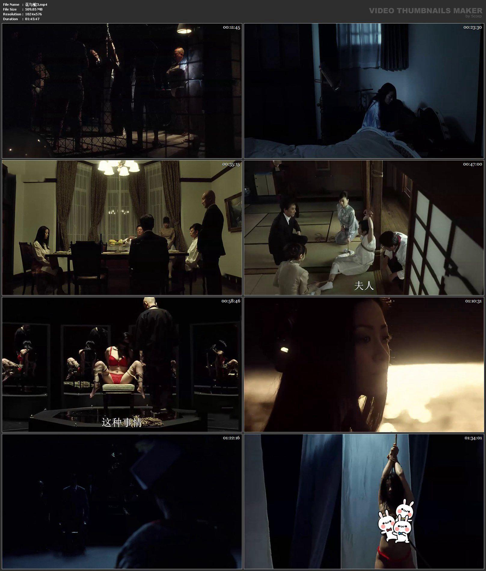 花与蛇3 日本电影影片剧照2