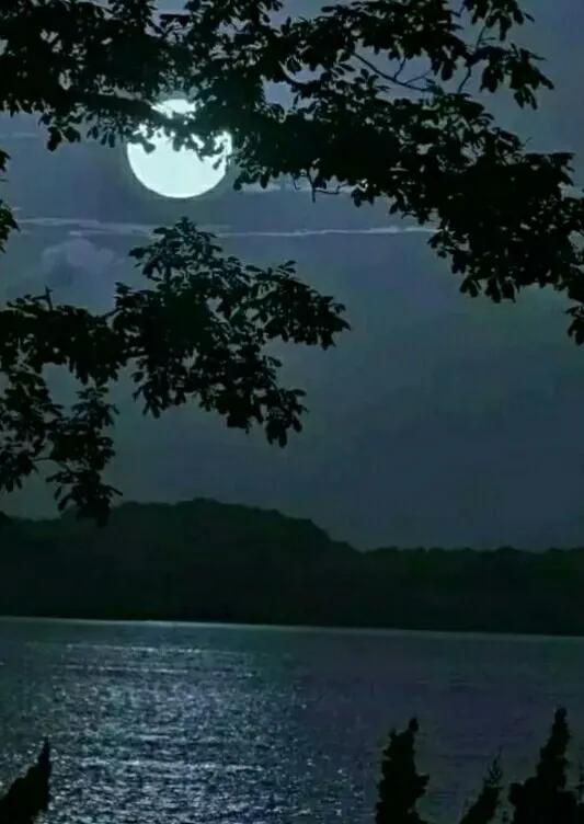 偶听《月亮月亮你别睡》有感