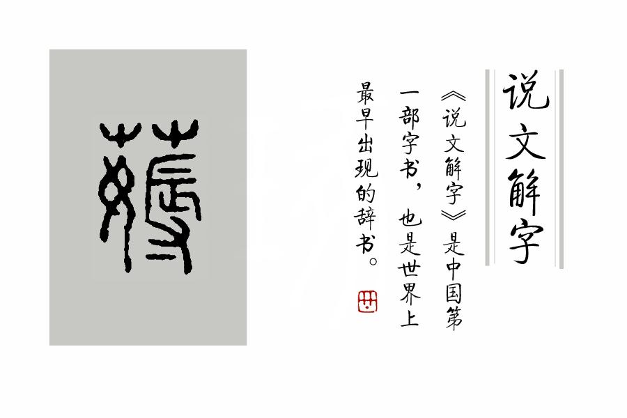 """汉字说:""""薅羊毛""""的""""薅"""",本来薅的是什么?"""