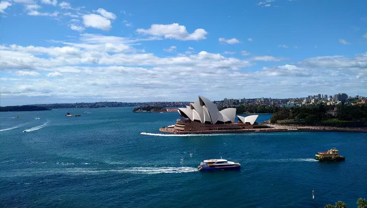 身在悉尼的新老华人:留下还是回国