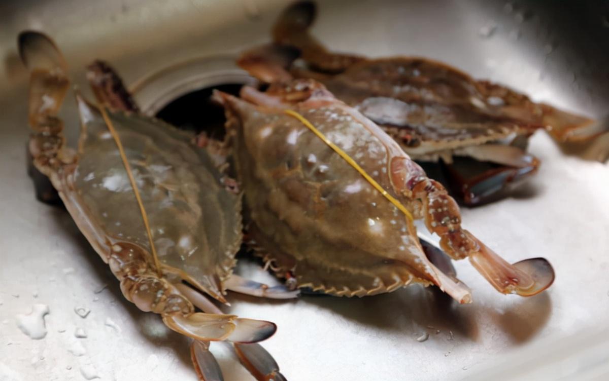 你对螃蟹了解多少?吃蟹时,这些禁忌不要碰