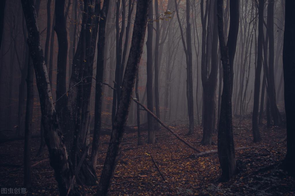 黑暗森林法则真实存在,人类文明已经证明