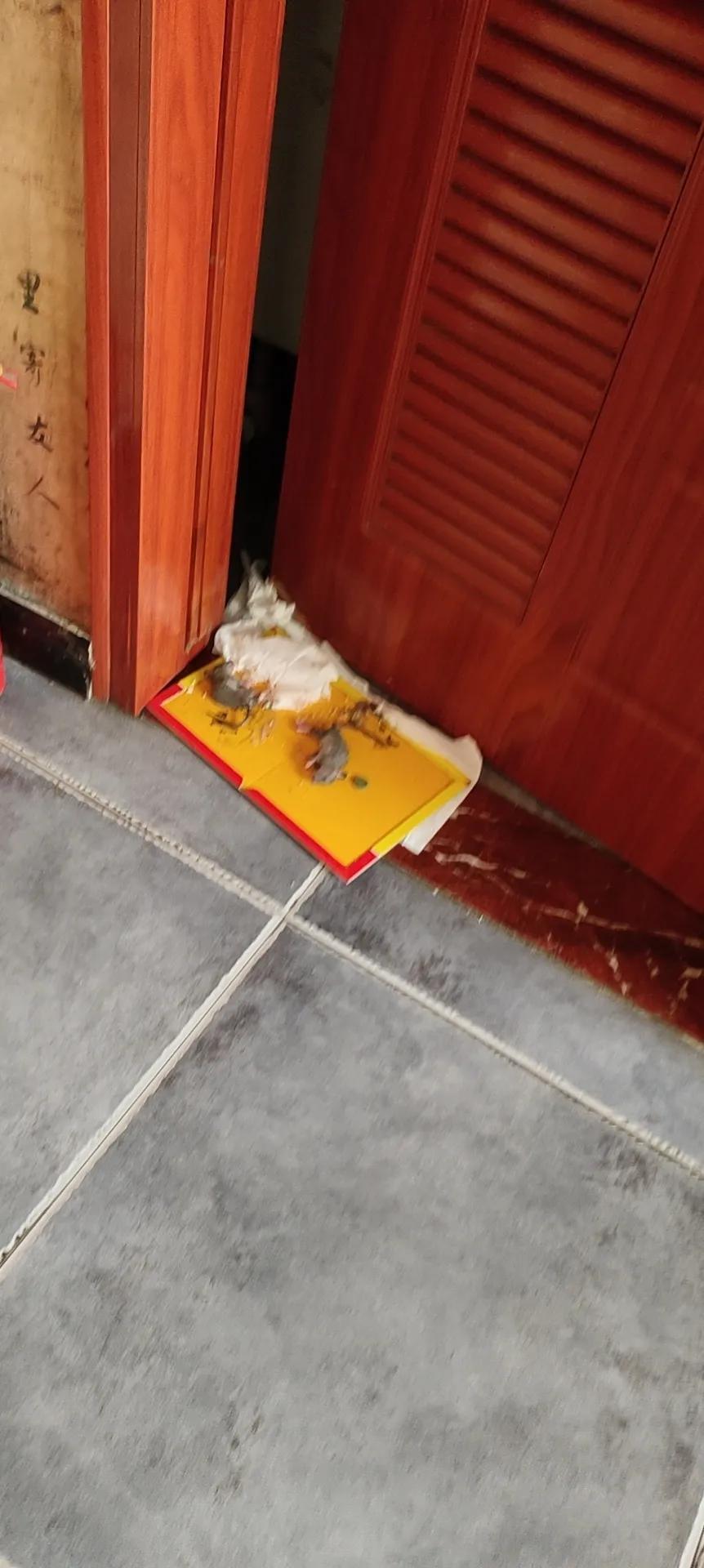 安全高效灭鼠方法
