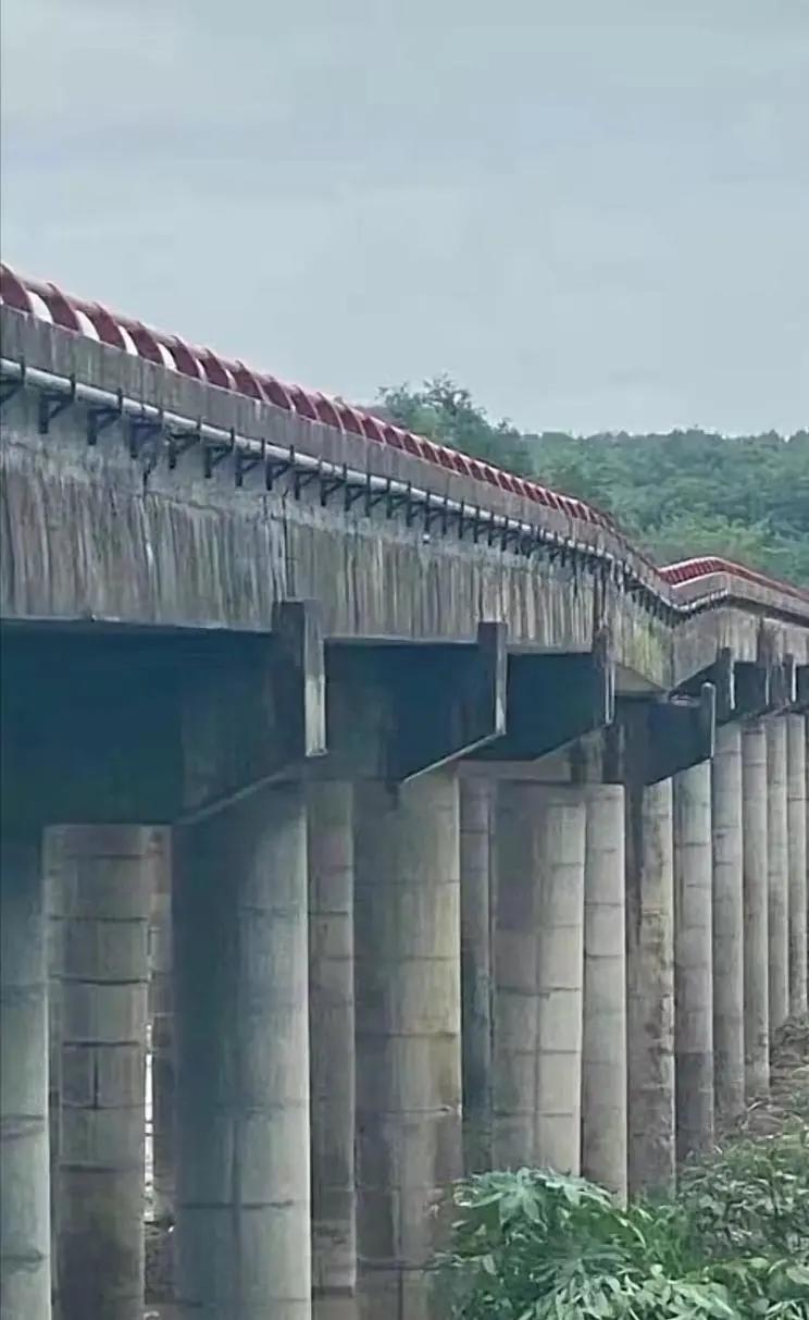 一高速大桥因台风发生坍塌!现场已封锁
