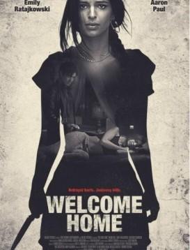 欢迎回家海报