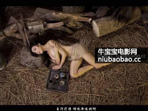 新金瓶梅3D 龚玥菲版影片剧照4